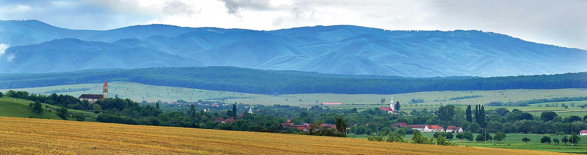 Vedere spre Munții Șureanu